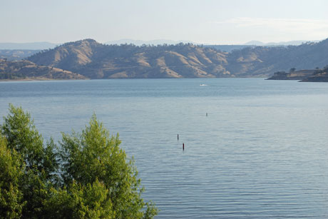 Photo of Millerton Lake